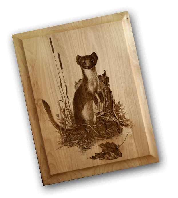 weasel-door-panel_preview